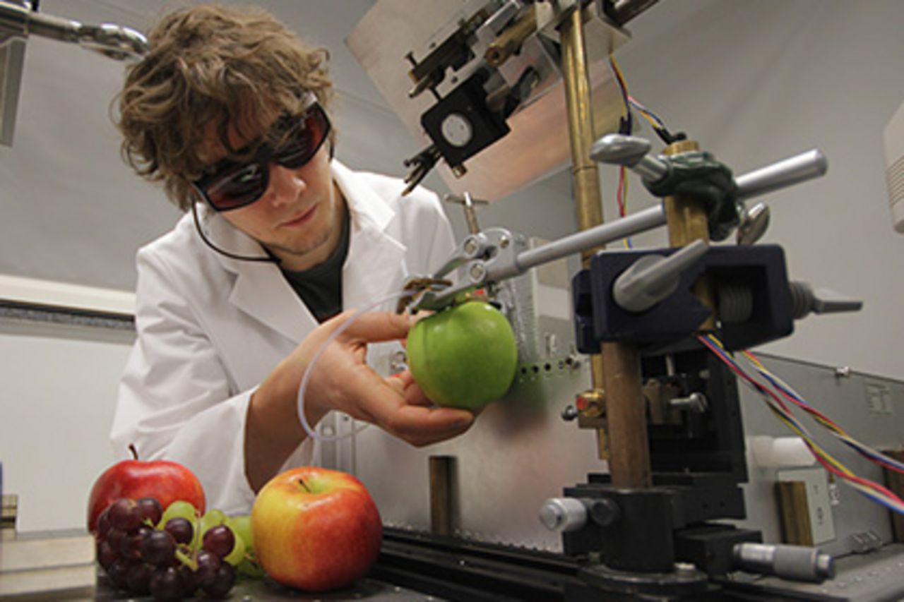 A young scientist conducts tries with several fruits in the laboratory